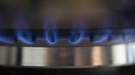 gas hob : Natural gas inflammation in stove burner, close up view Stock Footage