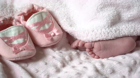 Close-up of feet of a newborn baby. Close-up of legs of a small child Stok Video