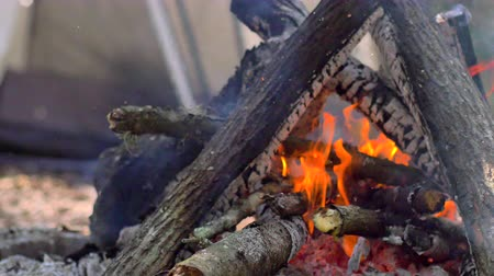 kamp ateşi : Man puts wood on campfire, 4K