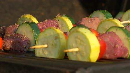 propane : Slow Pan of Kabobs on the Grill, 4K Stock Footage