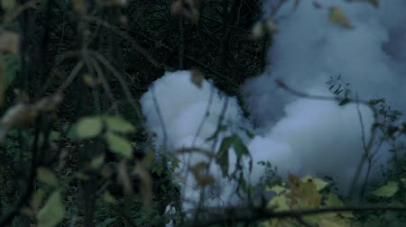 stealth : smoke grenade in the woods Stock Footage