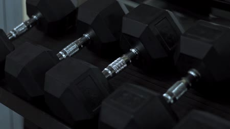 burro : heavy dumbbells in sports gym