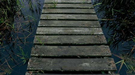 wooden bridge : Wooden bridge over river. Walking on a wooden bridge across river. Stock Footage