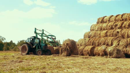 hay pile : Farming tractor transporting straw rolls on rural field. Agricultural industry Stock Footage