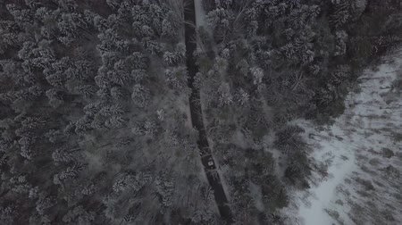 óvatosság : Aerial view from flying drone car moving on winter road through snowy forest