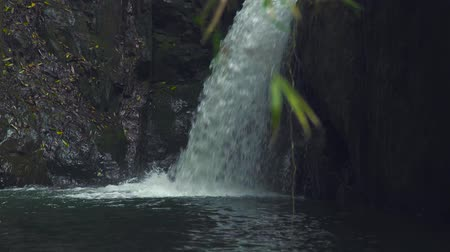 急流 : Mountain waterfall in jungle forest. Stream water from waterfall flowing on large stones in mountain river.