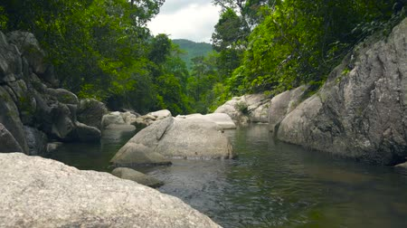 rohanó : Stream clean water in river flowing between large stones and boulders. Green tropical forest and stony river in jungle. Stock mozgókép