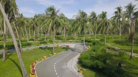 exotikou : Aerial view carting race track among green palm trees at summer day. Drone view race track for karting outdoor, green palm landscape.
