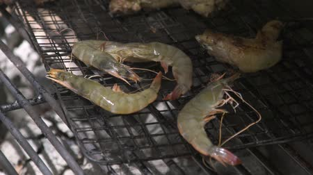 carvão gigante : Shrimps on barbeque grill while picnic close up. Shrimps barbeque meat on grill on fire and coal. Outdoor sea food cooking concept. Stock Footage