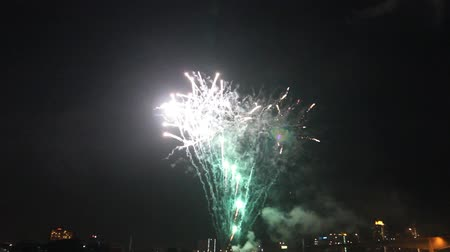 feliz ano novo : fireworks celebration New Year