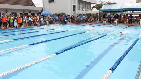 nadador : Swimming Freestyle Jersey. race of the On Nut swimming cup, in Bangkok. Vídeos