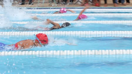 nadador : Swimming Freestyle Jersey. race of the On Nut swimming cup, in Bangkok. Stock Footage