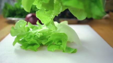 marul : Slow motion - Close up of chief man making salad healthy food and chopping lettuce on cutting board in the kitchen. Stok Video