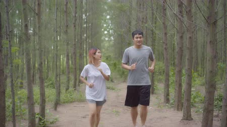 wanderweg : Healthy young athletic sporty Asian runner man and woman in sports clothing running and jogging on forest trail. Lifestyle fit and active women exercise in the forest concept. Videos