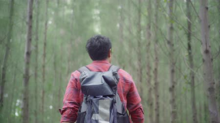 přežití : Hiker Asian backpacker man on hiking adventure feeling freedom walking in forest, Male enjoy his holidays near lots of tree. Lifestyle men travel and relax in freetime concept.