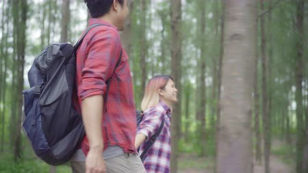 zálesí : Hiker Asia backpacker couple on hiking adventure feeling freedom walking in forest, Sweet Asian couple enjoy their holidays near lots of tree. Lifestyle Couple travel and relax in freetime concept. Dostupné videozáznamy