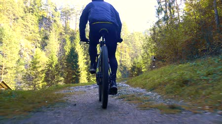 rodas : bearded man cyclist rides in the forest on a mountain bike.