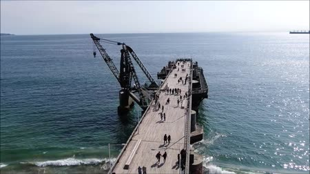 ペリカン : Aerial view of a Pier and a beach in Chile 動画素材