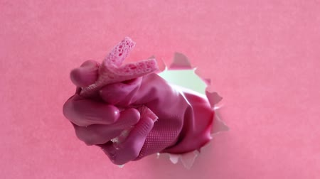 szakadt : Female hand holds wet sponge against background of pink torn paper.