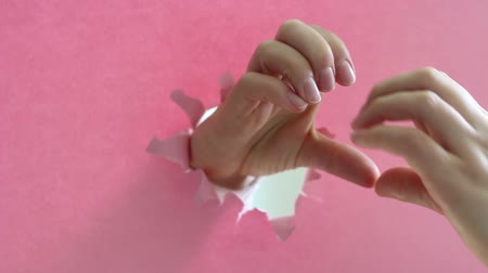 szakadt : Female hands in the shape of a heart on torn pink paper background. Stock mozgókép