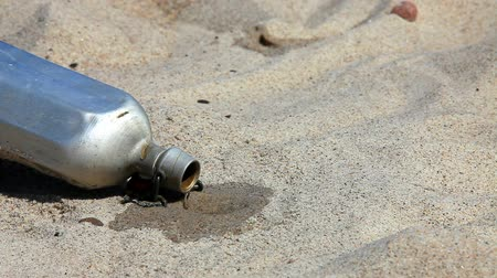 perdido : Canteen runs out of water in the hot sand Vídeos
