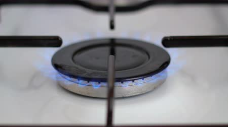 inflamável : Blue natural gas flame on the stove