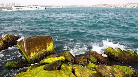 naturale : Mossy rocks and sea waves