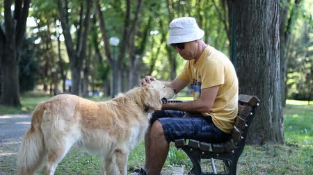 Man in a hat plays with his pet dog in the park. Golden retriever. Man with his dog Stock Footage