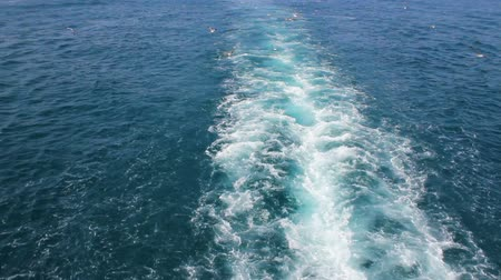Waves behind the ship Stock Footage