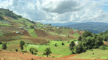 elpusztított : Time lapse of Hmong hill tribe village and terraced vegetable field ,Mae Rim district Chiang Mai province, Thailand. Stock mozgókép