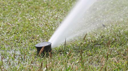 поле для гольфа : Sprinkler watering in golf course