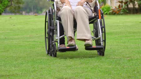 aposentar : Elderly woman relax on wheelchair in backyard with daughter