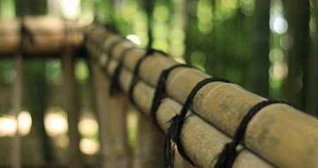 flor cabeça : Bamboo handrail at Chikurin park