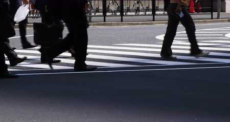 zebra : Walking businessman on the crossing at Ootemachi. Stock Footage