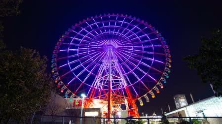 карусель : Ferris wheel at night in Odaiba Tokyo time lapse