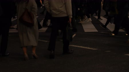 zebras : Walking people body parts at Shibuya crossing at night