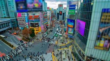 poz : A timelapse of the famous crossing in Shibuya Tokyo high angle wide shot daytime Stok Video