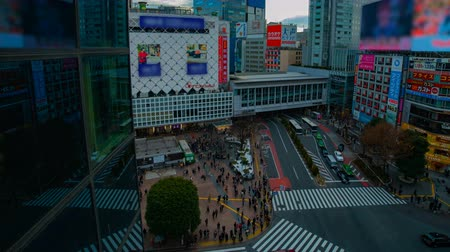 пересечение : A timelapse of the famous crossing in Shibuya Tokyo high angle wide shot daytime Стоковые видеозаписи