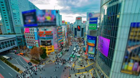 crossing road : A timelapse of the famous crossing in Shibuya Tokyo high angle wide shot daytime Stock Footage