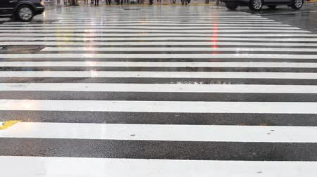 human foot : Moving cars and walking people at Shibuya crossing in Tokyo rainy day