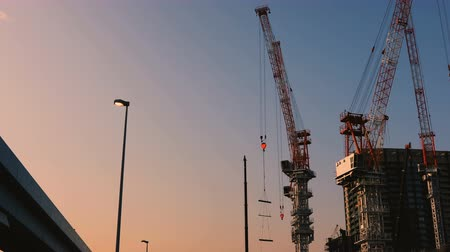 строительные леса : Cranes at the under construction in Tokyo wide shot at dusk