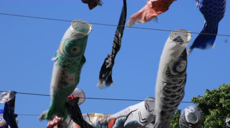 Токио : Carp streamer at the park in Tokyo daytime sunny