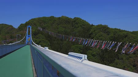 flama : Carp streamers at Ryujin big bridge in Ibaraki daytime sunny