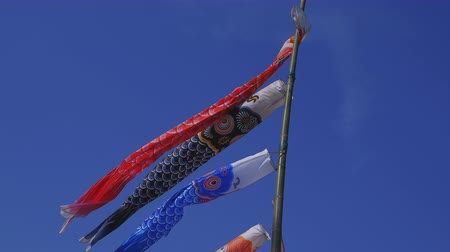 banderole : Carp streamers at Ryujin big bridge in Ibaraki daytime sunny