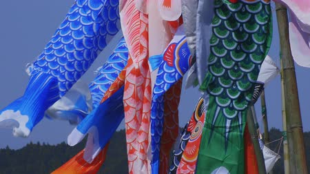 serpentyny : Carp streamers at Ryujin big bridge in Ibaraki daytime sunny