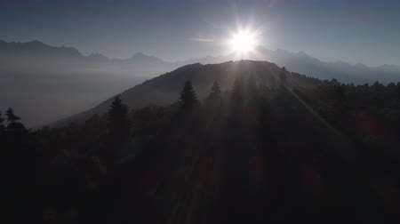 határok : flying over the forest in mountains in backlight on sunrise. drone shot