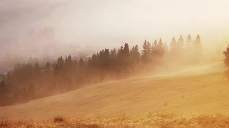 Misty sunrise with sun and forest, Mlynky, Slovakia, Time lapse