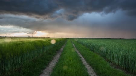 Storm and light on meadow landscape, Time lapse Стоковые видеозаписи