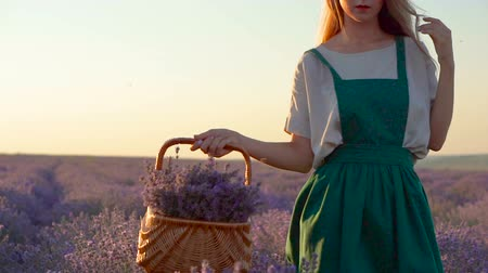 Happy Young Beautiful Woman walking in Lavender Field with basket in White and green Dress