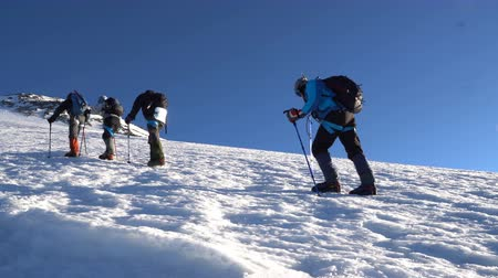 montar : Four Climbers in crampons coming up to the summit of Elbrus. Snow peak. Vídeos